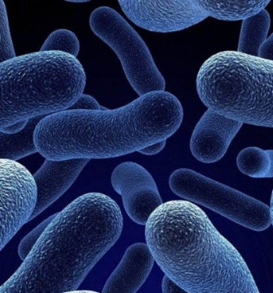 Probiotics: Your Gut's Best Friends